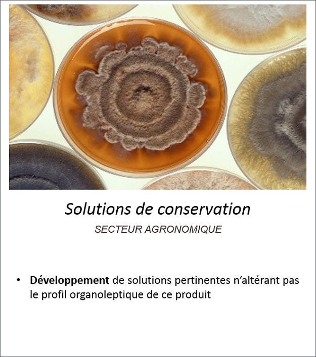 Exemple conservation